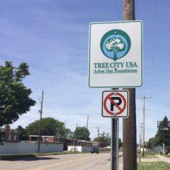 "Flint declared ""Tree City USA""–300 seedlings planted"