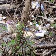"""Loving Gilkey Creek, one neighbor at a time:  residents plead """"no dumping"""""""