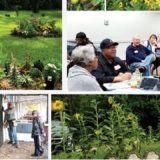 Genesee County Land Bank accepting applications for 2021 Clean & Green season